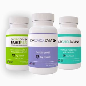 Dr. Carol's Digestion Booster Kit