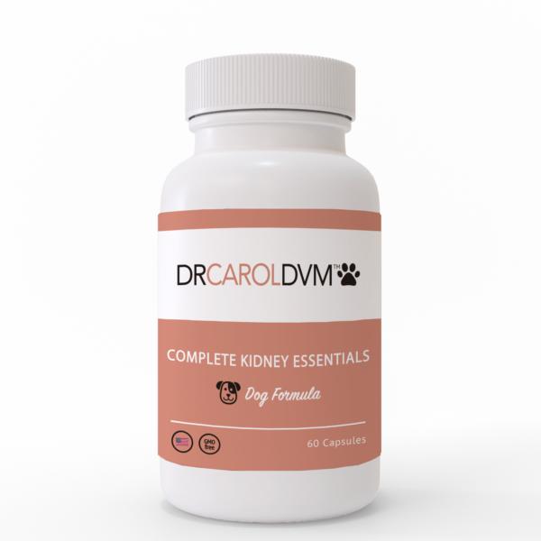 Dr. Carol's Kidney Support Kit
